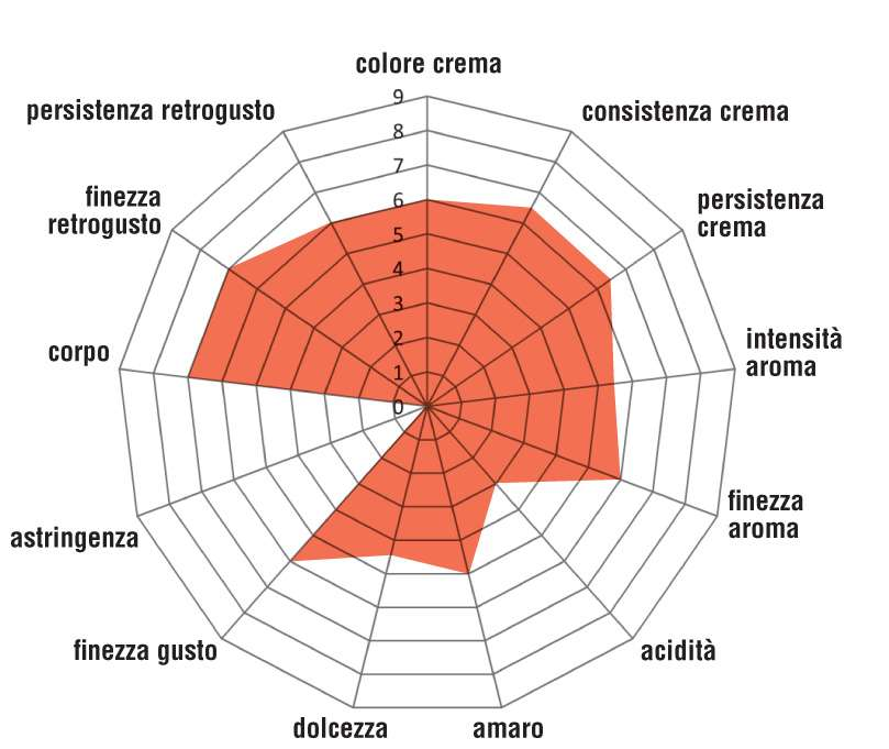 Mokaflor_60-40-Composizione_grafico