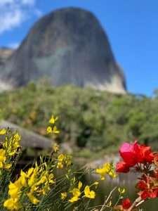 VIAGGIO IN PIANTAGIONE, IL VIDEO - ESPIRITO SANTO, BRASILE